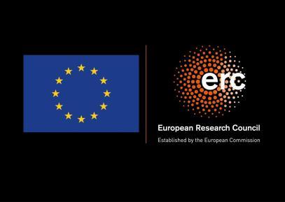 LOGO_ERC-FLAG_EU NEGATIF